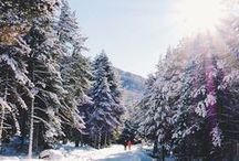 ❄❅❄ Winter Wonderland ❄❅❄