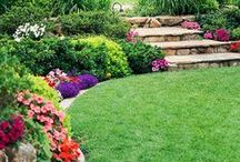 """garden, landscape, outdoor living / Garden & landscape inspiration for DIY.  See also my """"edible gardening"""" board"""" - Visit my blog for more: http://www.teeniecakes.com/organic-edible-gardening/   If you are not following, please limit repins to 10 a day per board."""