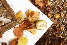 Automne / Des inspirations autour de la jolie saison de l'automne, des feuilles mortes, des couleurs mordorées. Mais aussi de la décoration, des moments et des fêtes liés à cette belle saison #automne #fall #autumn
