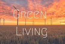 >>Green Living / Tips for living green - everything from recycling to how to live a waste-free lifestyle.