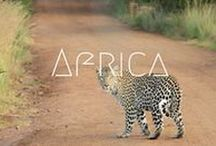 >>Africa / Are the animals calling you? Get off the beaten track in Africa to really get exploring. This dream destination will leave you wanting more! Everything from Morocco, to safaris, and Cape Town