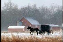 Amish life / by Karen Gray Childress