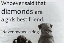 Dog Quotes / Famous (and not so famous) words about dog love.  If for no other reason than to prove that our own dog obsession isn't completely freakish.