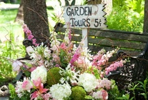 Flowers, Gardens, Landscapes
