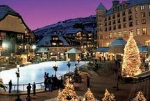 """Beaver Creek, CO - Colorado Info / With heated walkways, escalators to the slopes and immaculate grooming, slope-side accommodations, warm après-ski cookies and the Ivy League of ski schools, you really are """"not exactly roughing it"""" in Beaver Creek. Despite 300 days of sunshine and 1,805 acres of Colorado grandeur, Beaver Creek also boasts the intimacy of an alpine village, featuring mouthwatering cuisine, blissful spas and captivating performing arts."""