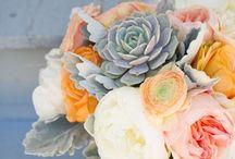 Flower power / Bridal bouquets, boutonnières, flower decoration