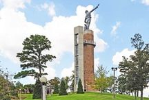 Vulcan Park and Museum / Vulcan is the world's largest cast iron statue; made of 100,000 pounds of iron and 56 feet tall, he stands at the top of Red Mountain overlooking the city of Birmingham. But, Vulcan is more than a statue. Vulcan Park and Museum features spectacular views of Birmingham, an interactive history museum that examines Vulcan and Birmingham's story, a premier venue for private events and a beautiful public park for visitors and locals to enjoy.