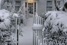 Winter / by Susan Davis