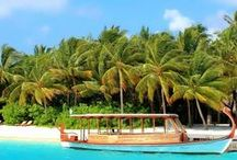 Travel / by Exclusive Travel & Cruises