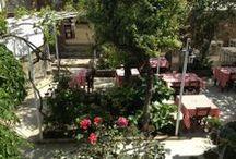 Garden to Relax / Happy hours time begin in Hotel Fahri's garden.