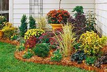 Gardening as in Flowers