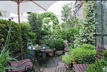 Terrasse - Exterieur - Balcon ▲