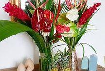 Colipays - Photos de nos clients / Ce tableau réuni les plus belles photos de nos produits, prises par nos clients à la réception de leur Colipays ! retrouvez toutes les photos avec le #Colipays sur Instagram, et sur notre page facebook Colipays