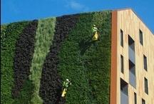 Eco Vertical Gardens / not just unused vertical spaces....