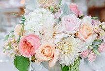 Wedding - Flowers / Ideas for Various Wedding Flowers