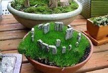 Jardins/flores/plantinhas/varandas
