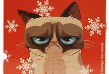 Grumpy Cat w/ a Santa Hat