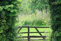 garden rooms & sheds & doors & places to be / garden rooms,doors,sheds,