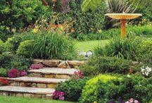 Ogrody / Wystrój ogrodów i balkonów, ciekawe kompozycje kwiatowe oraz DIY do ogrodu