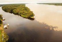 Manaus | AM |  Brasil