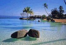 Santa Lúcia | Caribe / E tem tudo aquilo que achamos bom: montanhas para fazer trekking, florestas para fazer hiking, areia dourada para descansar, praia cristalina para mergulhar e ainda um vulcão. Para melhorar, é cheia de tartarugas e golfinhos que você pode ver de perto.