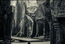 Angkor / Angkor, Cambodia, 2014