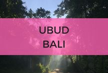 Ubud Bali / Ubud Bali things to do, where to stay, with kids, restaurants, shopping and much more