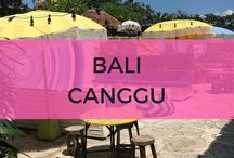 Bali Canggu / Bali Canggu things to do, places to eat and where to stay