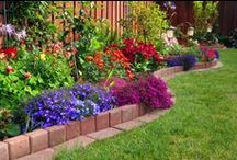 Outdoor Landscaping Ideas
