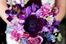 { Bouquets } / My Mankato Wedding, Online Bridal Resource Guide & Real Wedding Inspiration for Nearly Weds in Southern Minnesota www.MyMankatoWedding.com