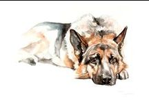 My Work* Watercolor Pet Portraits from Photos / Watercolor Pet Portraits. Custom Watercolor Animal Portraits. Custom Pet Portraits. Elena romanova Pet Art. www.7portraits.com 7 portraits Custom Pet Art