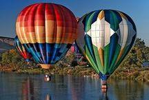 Balony / Różnokolorowe i o różnych kształtach balony