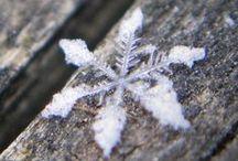 White Winter♥