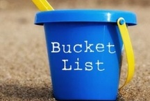 Bucket List / A few of fun things I would like to do in my lifetime. And a few that I have checked off. / by Shirley Hamm
