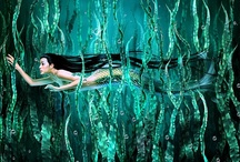 Mermaids / by Michelle Plouff