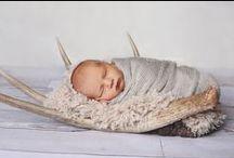 kb | newborn photography / studio newborn photography