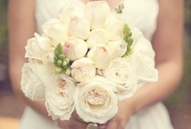 Wedding Inspiration / by Holly Winter