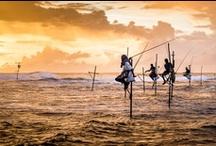 Sri Lanka / by Christy Hawkins