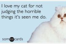 Pet Ecards / Need just the right card for someone?  Look no further!