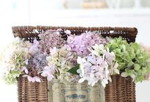 Flower arrangement / Flower arrangmemt