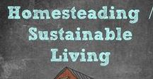 Homesteading - Sustainable Living / Learn how to live sustainably. Gardening Tips / Hunting / Outdoor Gear / Survival / Preparedness