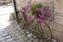 Bicycle - Fiets / Bicycle - Fiets