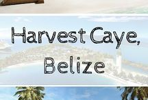 Cruise to Belize / Are you cruising to Belize? If you are planning to visit Harvest Caye or Belize City, check out our travel guide for everything you need to know. #Cruise #Caribbean #Belize #HarvestCaye