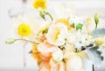 Flores, flores...