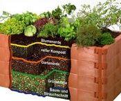/DIY Gemüsebeet im Garten / Ideensammlung und Tipps für das eigene Gemüsebeet