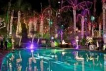 Festival of Lights   / Festival of Lights at The Mission Inn Hotel & Spa / by The Mission Inn Hotel & Spa