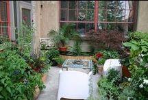 lovely garden ideas