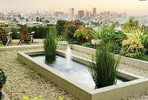 Landscape Design / Inspiration Board