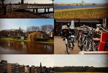 My Photos / what I like in photos