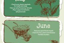 Gardening / by heirloom countryfarms
